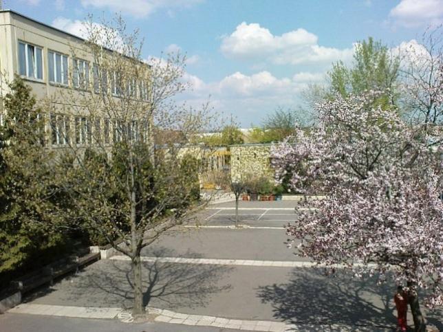 iskolakert